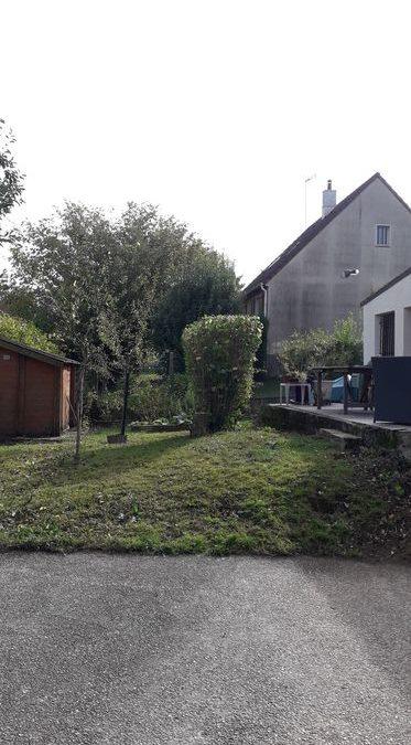 Abattage et taille | Saint-Germain-sur-Morin 77